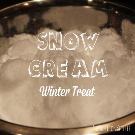 snow cream main photo