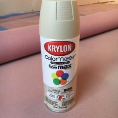 coraling jewelry_tray spray paint