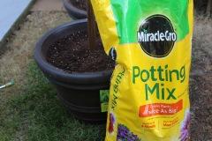 light flower pots_fill with potting soil